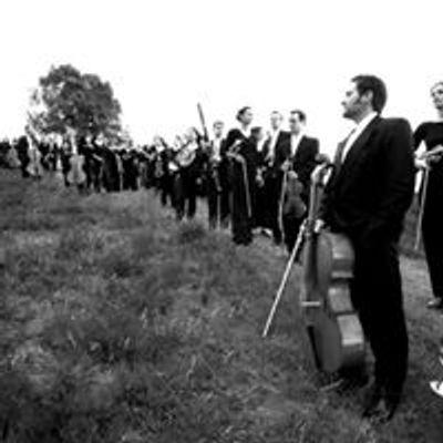 Harvestehuder Sinfonieorchester