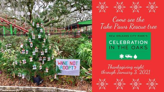 Storyland New Orleans Christmas 2021 Tpr Celebration In The Oaks Tree Viewing Carousel Gardens Amusement Park New Orleans 2 January 2021