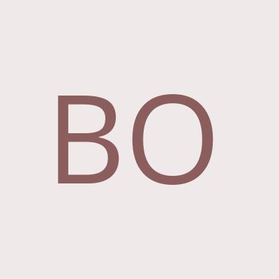 Bondareg