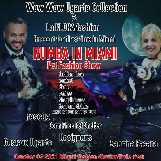 Rumba in Miami...fashion show for dogs
