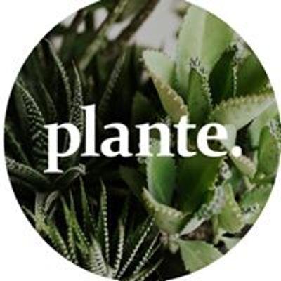 Plante Budapest