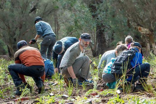 Planting at Banyowla Regional Park
