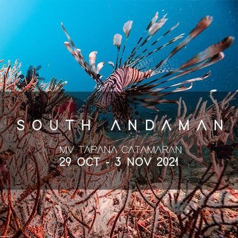South Andaman MV Tapana Catamaran