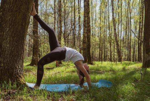 Yoga Im Park I Waldyoga Palais Sommer Dresden 4 August 2021