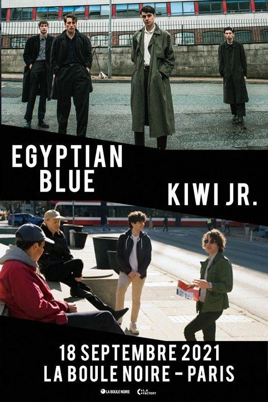 Egyptian Blue - Kiwi JR.