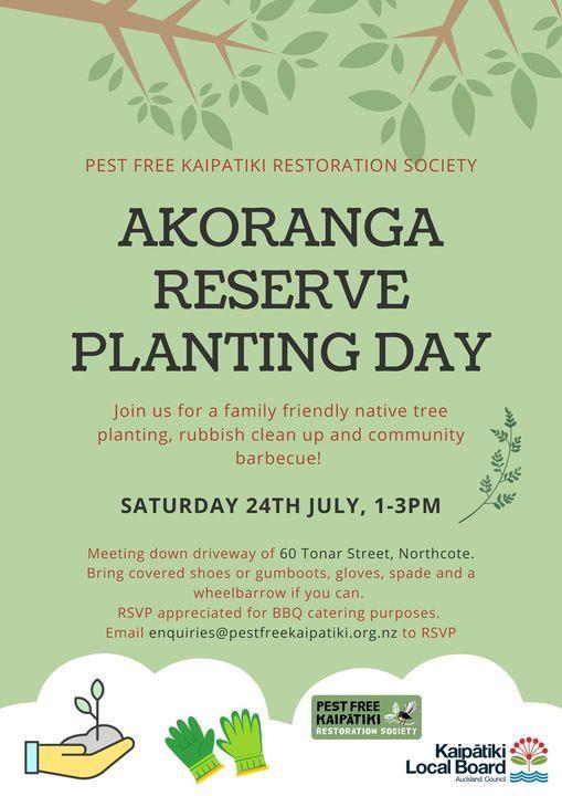 Akoranga Reserve Planting Day