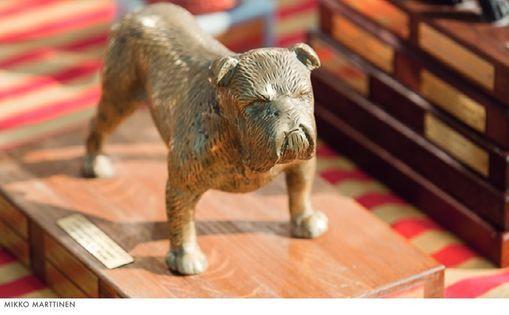 Suomen Englanninbulldoggiyhdistyksen p\u00e4\u00e4erikoisn\u00e4yttely 2021
