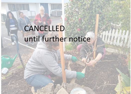 FREE Wicking garden bed and Fruit Tree Planting Workshop