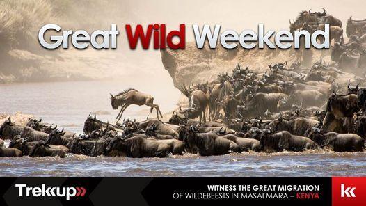 The Great Wild Weekend | Great Migration, Kenya