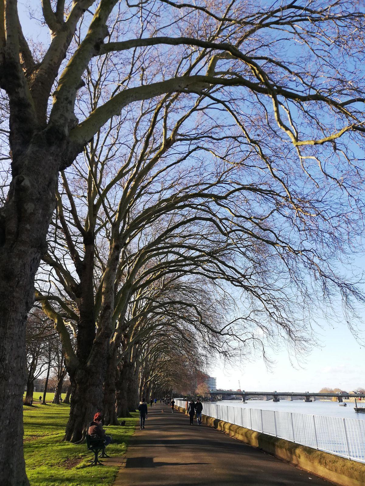 Urban hike for mental health - Thames Path West: B