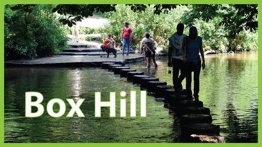 BOX HILL AND THE NORTH DOWNS - SATURDAY