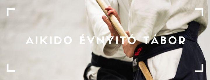 (\u00dajra)kezd\u0151 aikido workshop