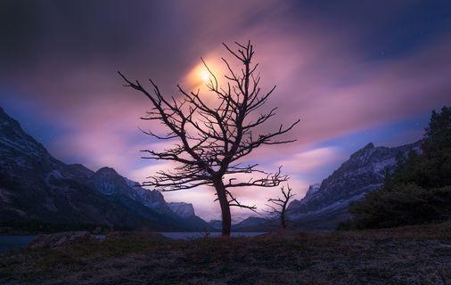 Landscape of Loss - Stillbirth