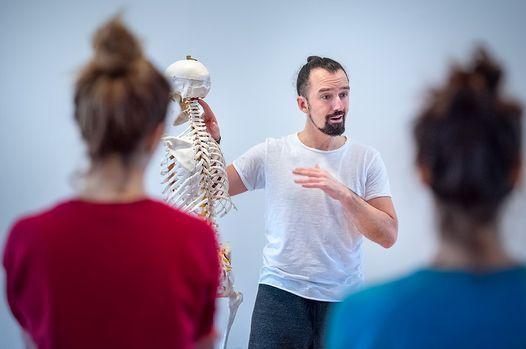 200h Pr\u00e4senz Element Yogalehrer:innen Ausbildung