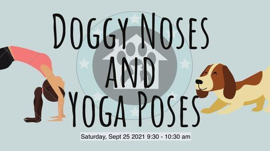 Doggy Noses and Yoga Poses