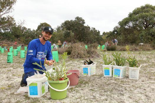 National Tree Day community planting