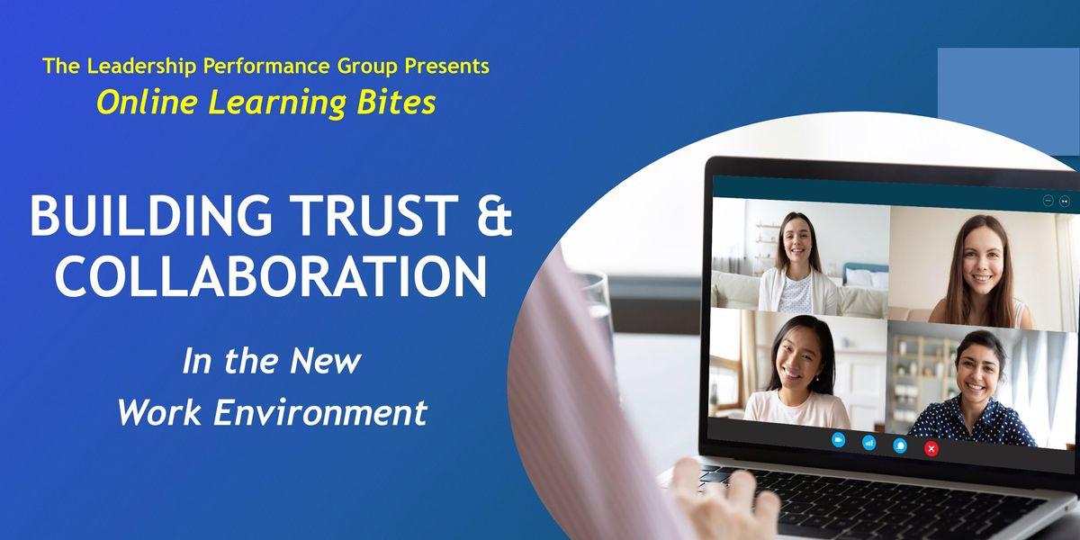 Building Trust & Collaboration (Online - Run 20)