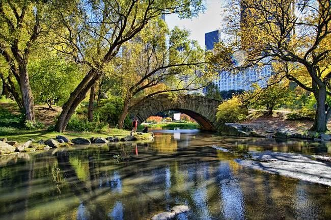 Date Walk on Central Park - Singles Ages 30 - 45