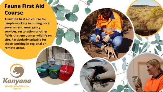 Fauna First Aid Course