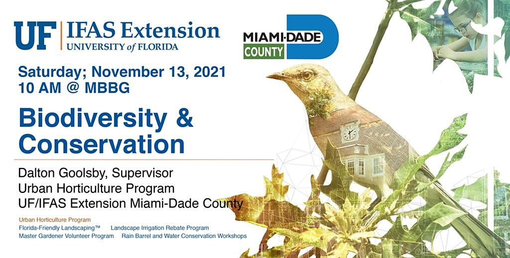 Second Saturday Seminar: Biodiversity & Conservation With UF IFAS
