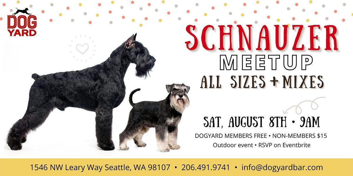 Schnauzer Meetup at the Dog Yard