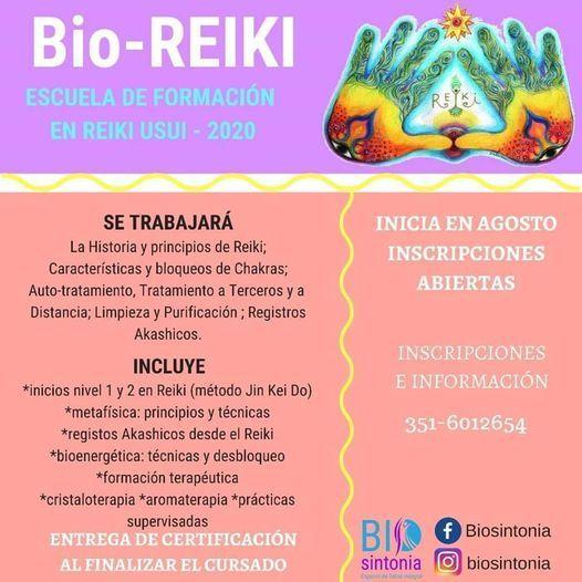 Curso Terapeuta Pack Full Bioreiki Biosintonia Córdoba 13 March 2021