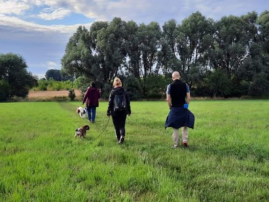 Sozial Walk
