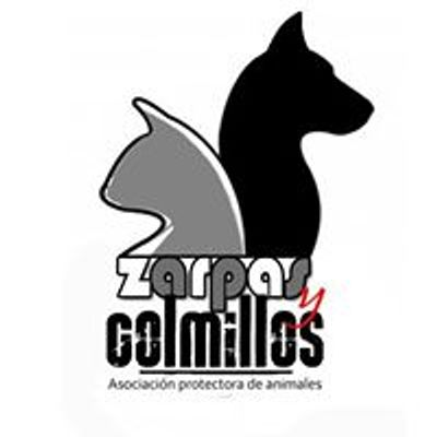 Asociaci\u00f3n protectora de animales Zarpas y Colmillos