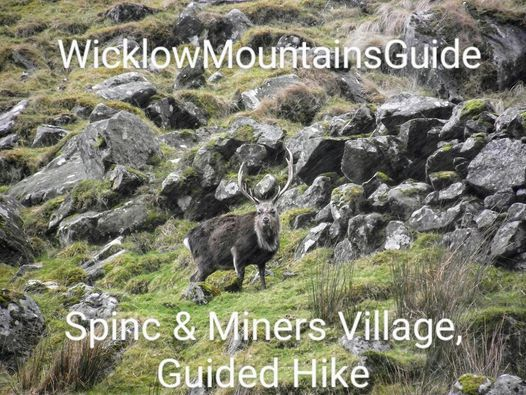 Glendalough, The Spinc & The Miners village Guided Hike, Sunday October 17th.