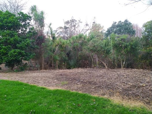 John Kay Park Planting Day