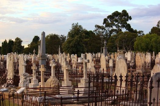 Discover West Terrace Cemetery