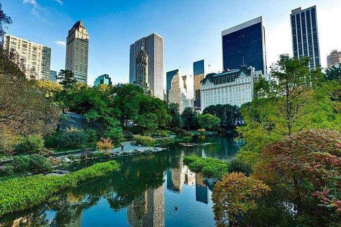 Date Walk on Central Park - Singles Ages 30-45