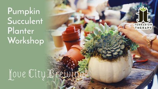 In-Person Pumpkin Succulent Workshop at Love City Brewing
