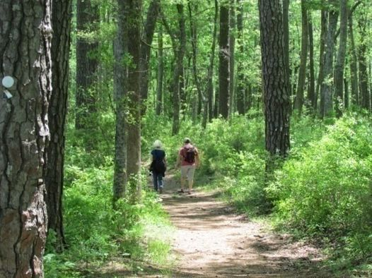 Hike for Your Health
