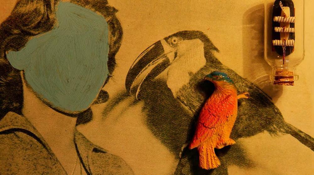 """CCCB-Xc\u00e8ntric. Taller online d'animaci\u00f3 """"povera"""" amb Elena Duque"""