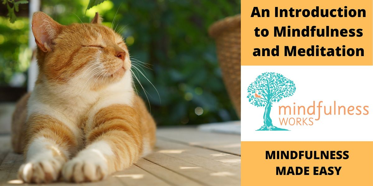 An Introduction to Mindfulness and Meditation 4-week Course \u2014 Townsville