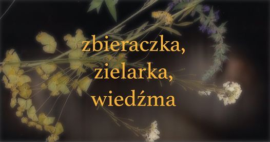 Zbieraczka, Zielarka, Wied\u017ama | Julia Krupa