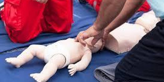 American Red Cross Pediatric Advanced Life Support (PALS)-Blended Learning