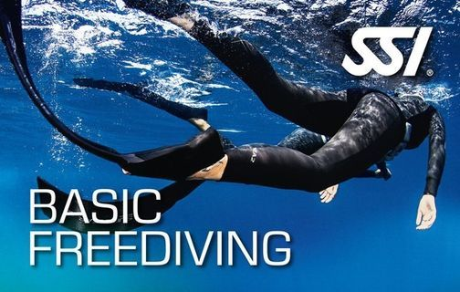 SSI Basic Freediving - $249