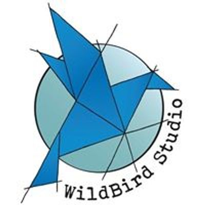 WildBird Studio - Stained Glass for a New Generation