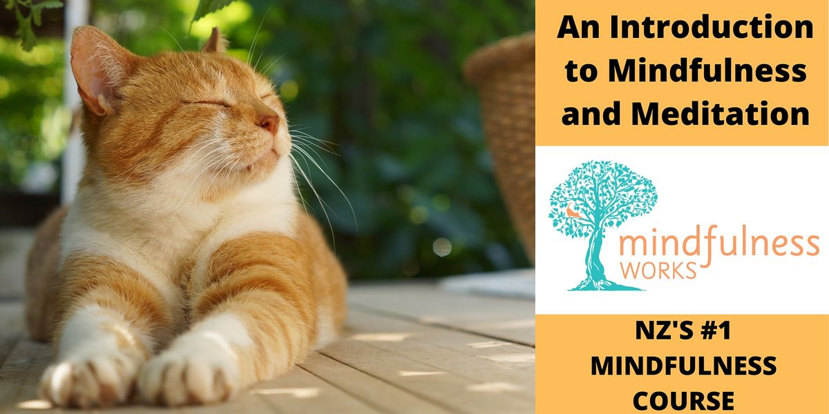 An Introduction to Mindfulness and Meditation 4-Week Course \u2014 Mt Eden
