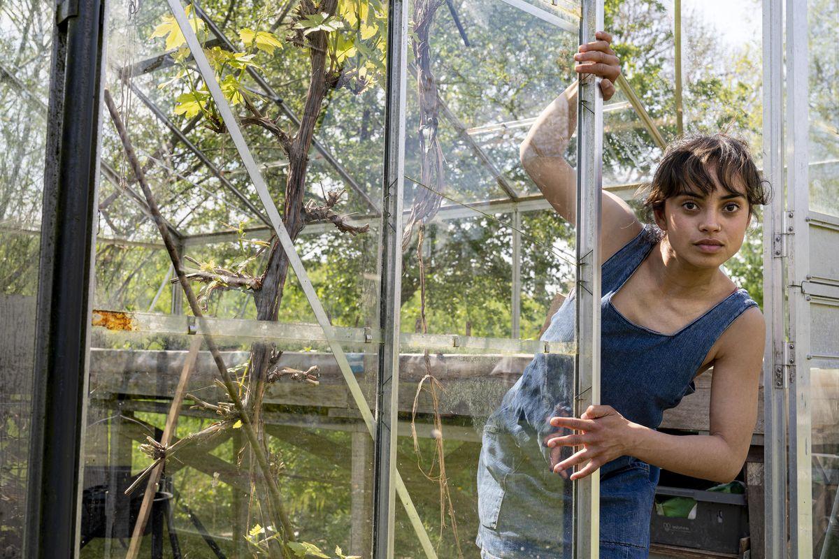 't Zonnehuis op z'n kop: STeK (3+) van Dadodans | Gaia Gonnelli