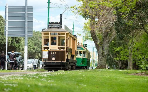 Live Day: Trams